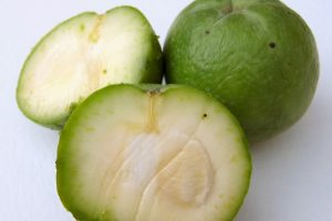 White Sapote Fruit