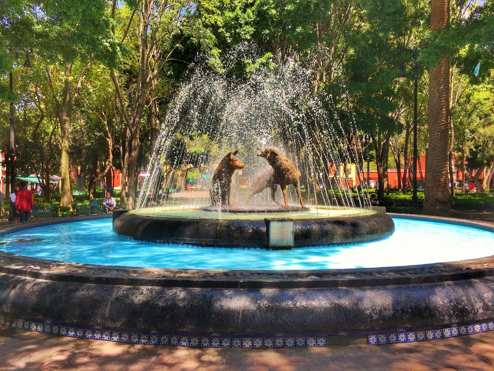 Coyoacan Fountain Mexico City