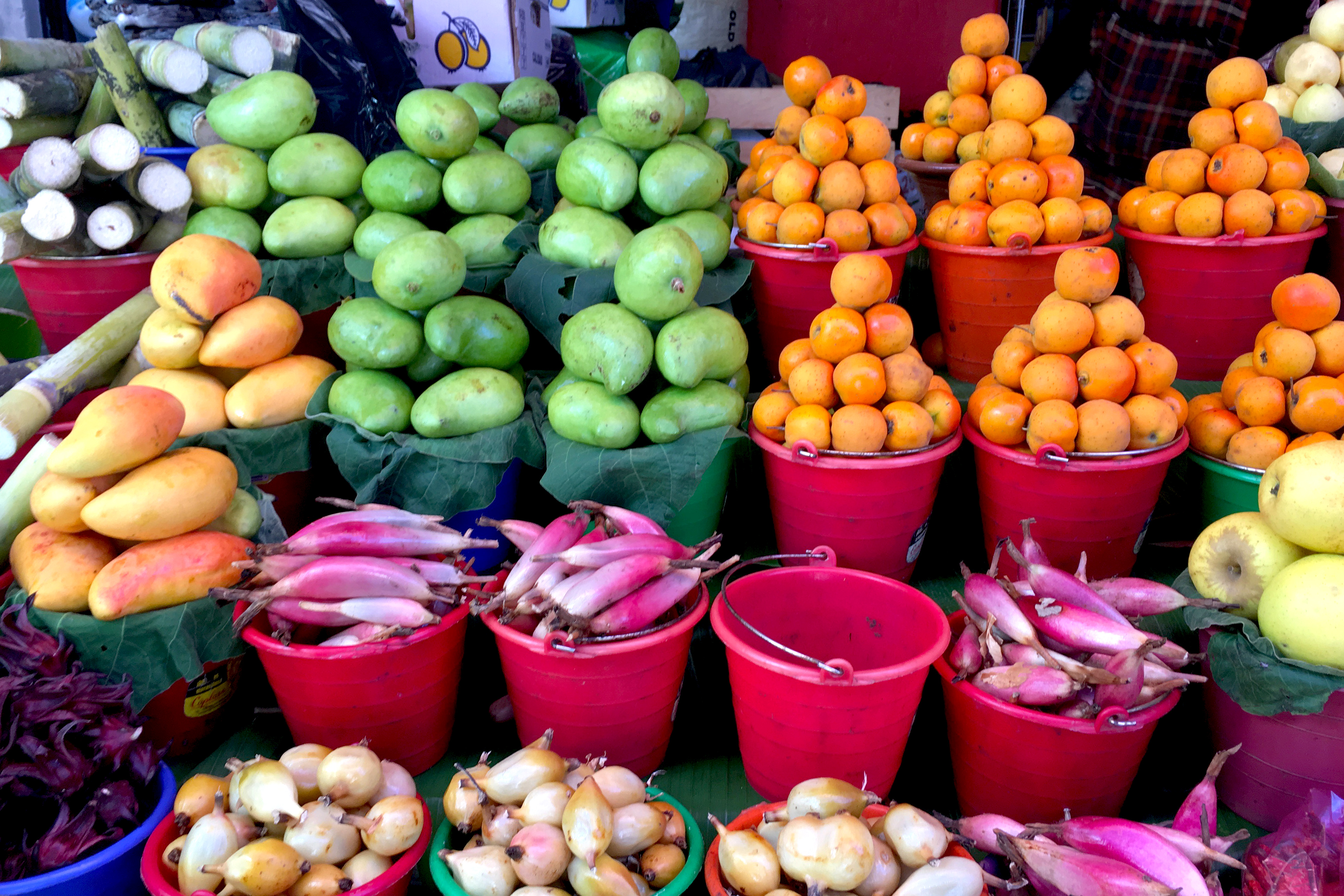 Colorful Fruits at Market in San Cristóbal, Chiapas